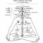 Les Chakras, centres d'énergie